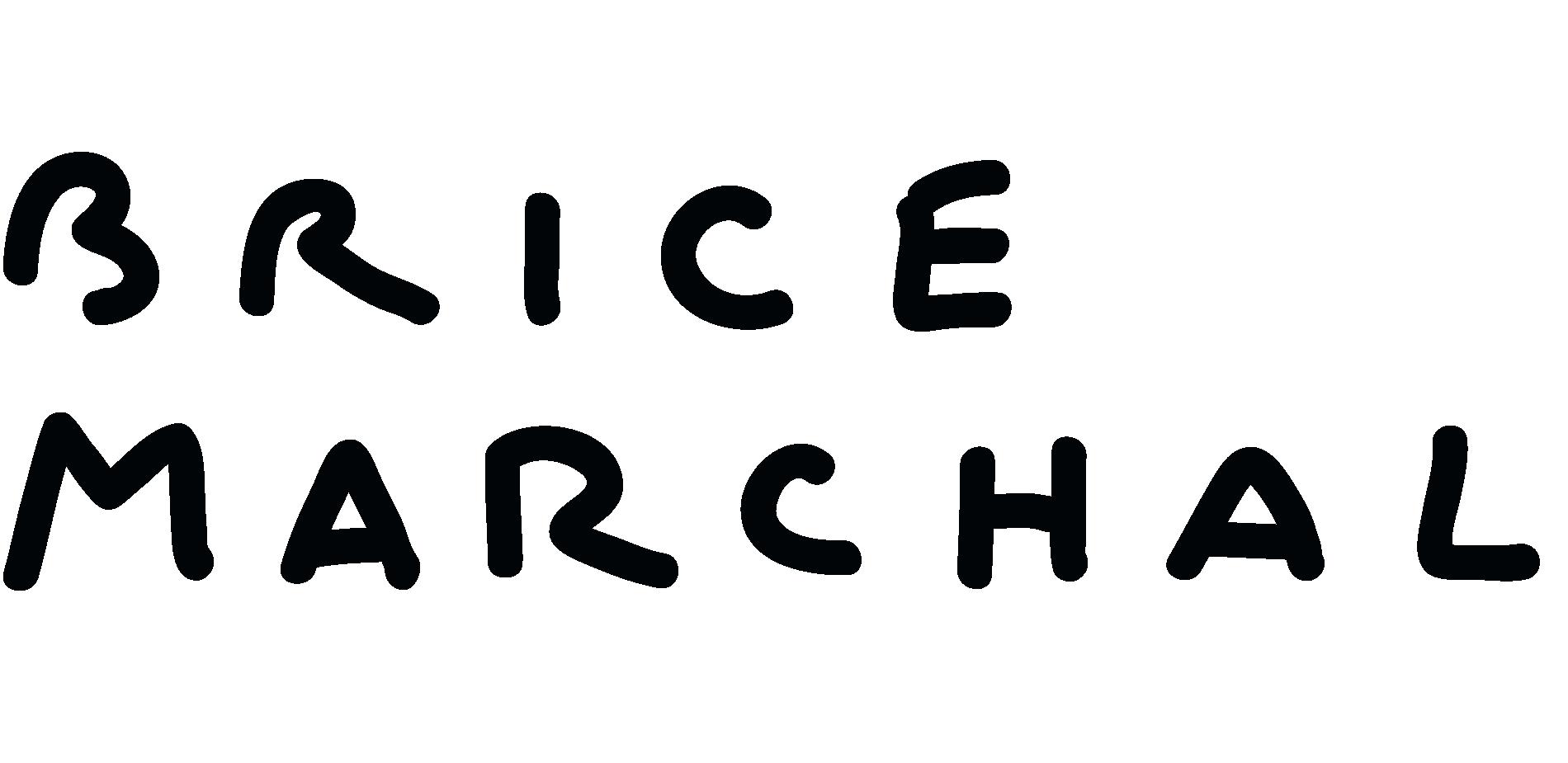 Brice Marchal studio